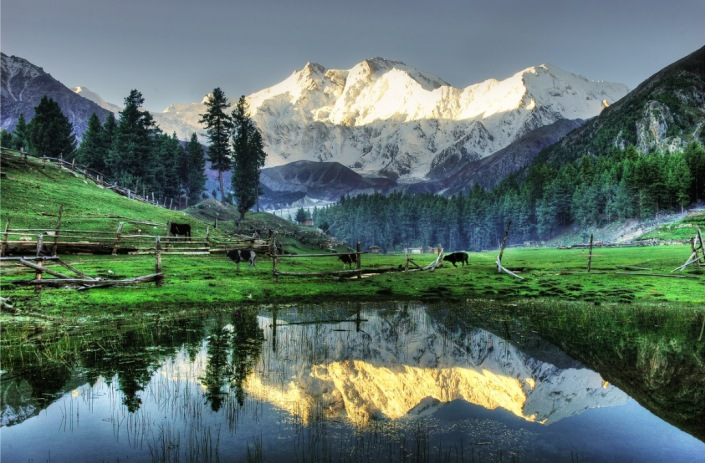Joot, or Fairy Meadows in present-day Pakistan, from where once can see the north face of Nanga Parbat, the 9th highest mountain in the world