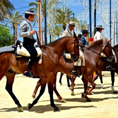 horse_fair_jerez