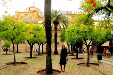 mosque_courtyard_cordoba